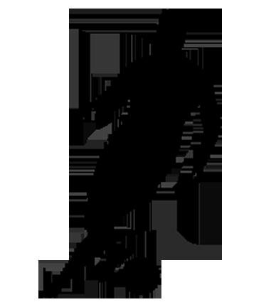 Caseriu